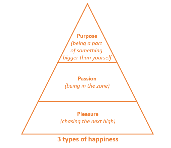 Tony Hsieh's Happiness Framework, 3P's of happiness