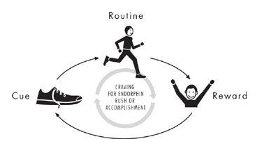 Cue Routine Reward Cycle